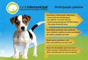 NEA_Canil_Intermunicipal