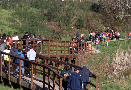 Ponteareas celebrou o Día da Árbore con 500 escolares