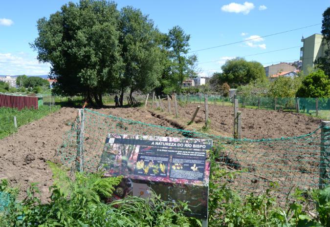 Bueu pon en marcha unha horta comunitaria, educativa e de lecer