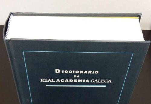 O Dicionario da Real Academia Galega superou en 2017 os 20,5 millóns de consultas