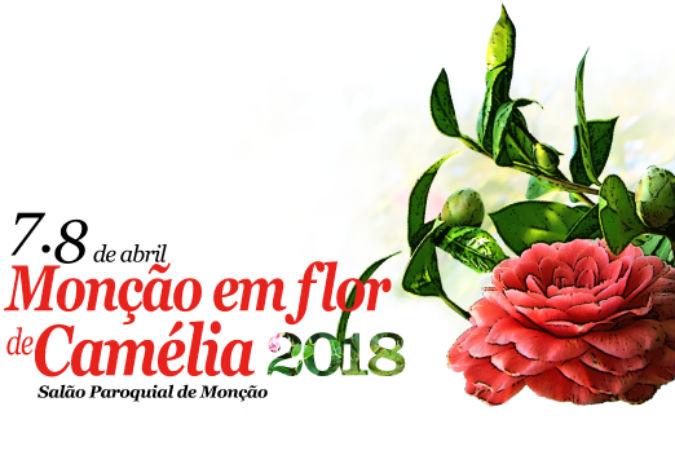 Monçao en flor de Camélia