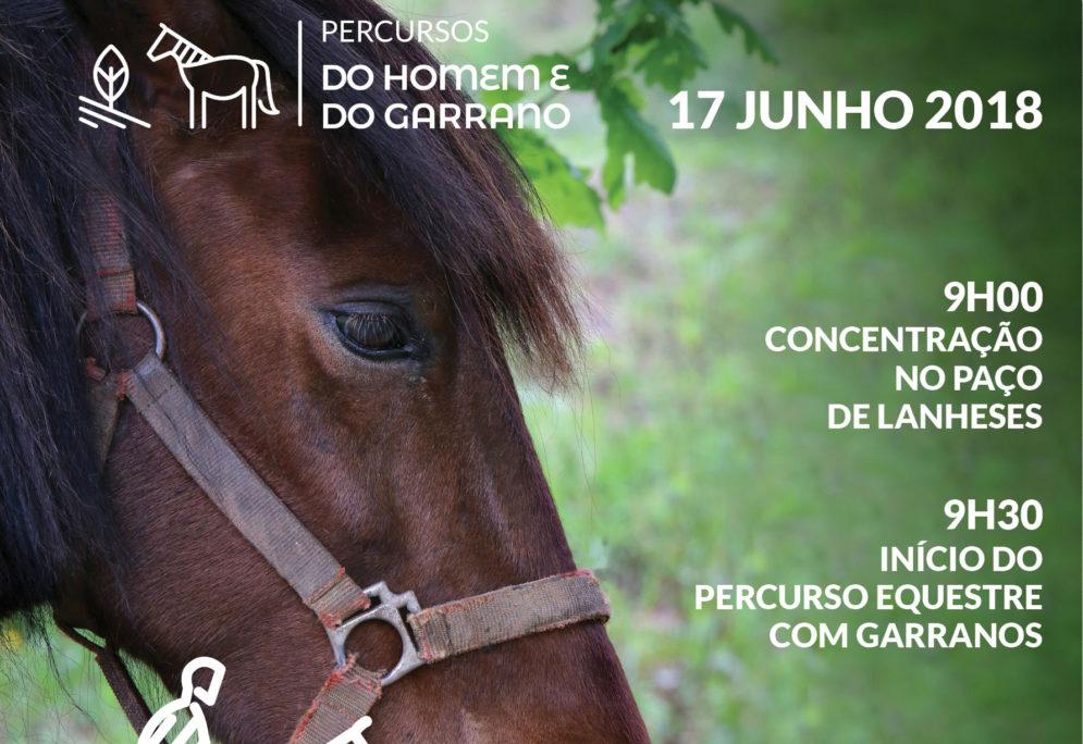 Viana do Castelo inaugura Percurso Equestre Lanheses-Montaria com rota de 13 kms