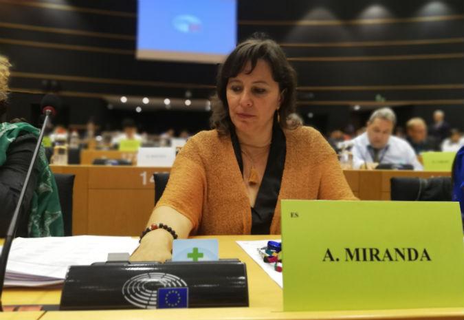 O Bng reclama á UE a sinatura dun convenio con Noruega que garanta os dereitos dos Galegos Retornados