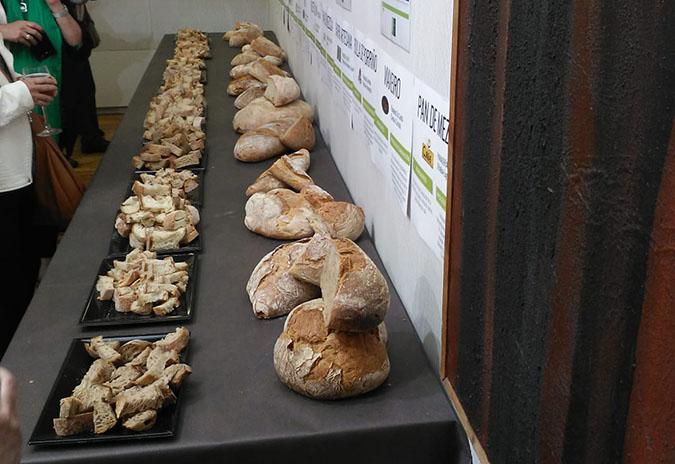 Un pan de centeo con historia representa a Tomiño nunha cátedra da Universidade de Lugo