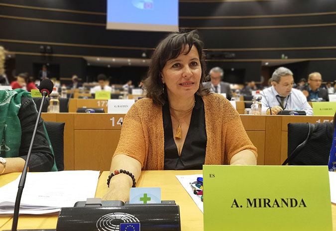 """Ana Miranda: """"A Comisión Europea debe investigar o incumprimento das directrices da Rede Natura na construción dos parques eólicos"""""""
