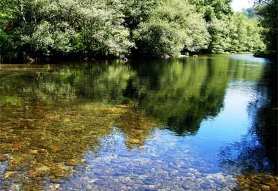 Cruz Vermella anima os cidadans de Ponteareas unha vez mais a adicar parte do seu tempo libre ó medioambienteo