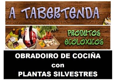 Obradoiro de cociña con plantas silvestres