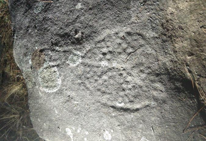 Comezan as visitas guiadas aos petróglifos do Rosal
