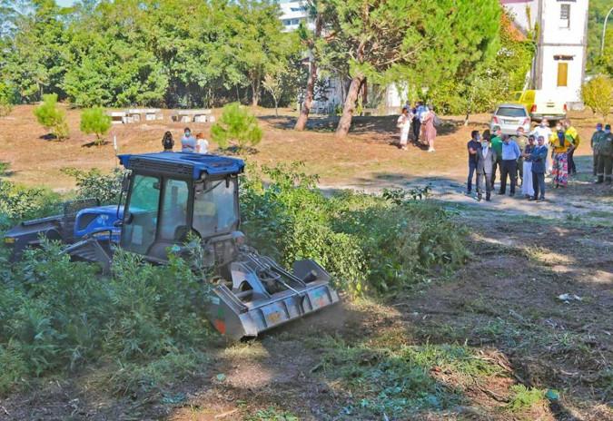 Mata Nacional do Camarido vai ser valorizada num investimento de cerca de 62 mil euros