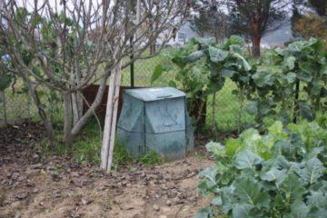 Concello de Sober reparte de balde composteiros domésticos