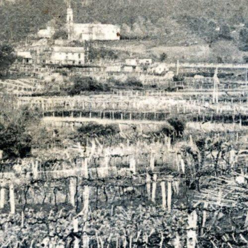 Os Bens do Mosteiro de Melón en Arbo: o Foro do Rial (1666)