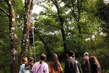 Escolares de Ponteareas implícanse na conservación dos morcegos na contorna do río Tea