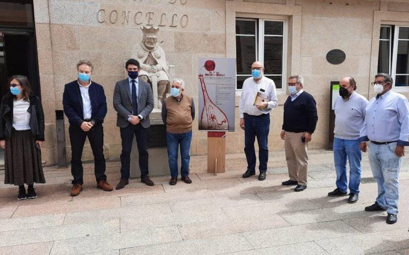 Difusión da figura do trovador Martín de Pedrozelos en Sarria