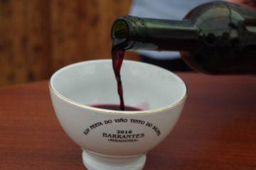Ribadumia elixe os mellores viños tintos e autóctonos da XLVIII Festa do Viño Tinto do Salnés