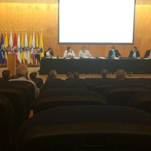 Assembleia Intermunicipal da CIM Alto Minho aprova relatório de gestão e contas de 2020