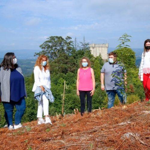 O Bosque do Castelo de Sobroso revive o seu esplendor medieval